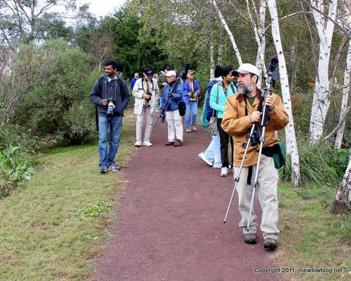 Mill Creek Guided Walk