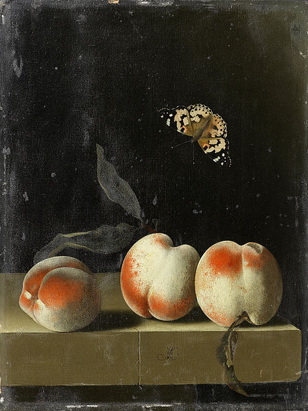 449px-Adriaen_Coorte_-_Three_peaches_on_a_stone_ledge_with_a_Painted_Lady_butterfly