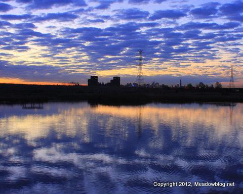 Dekorte sunrise_1076-001