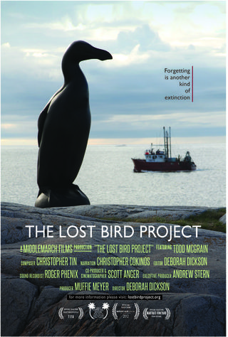 Lostbirdproject_poster