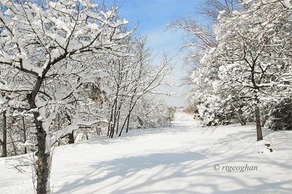 Feb 4_DeKortePark SnowSM_RTGeoghan_4599