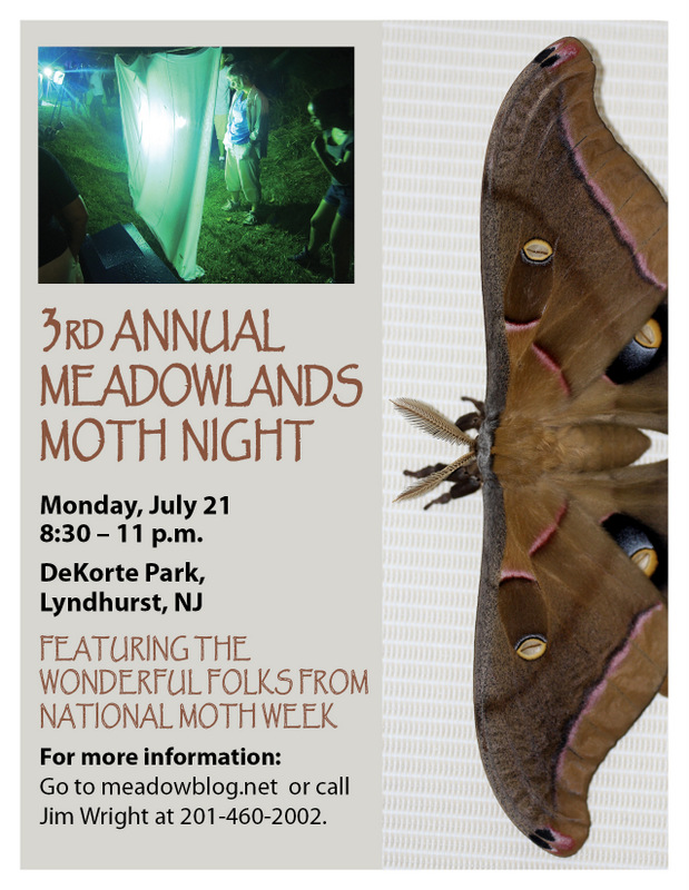 2014 moth night flyer