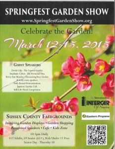 Springfest Flier
