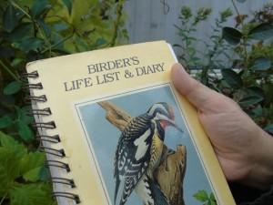 birders list (2)