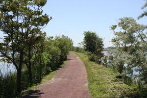 Lyndhurst Nature Reserve