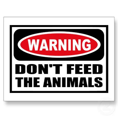dont-feed
