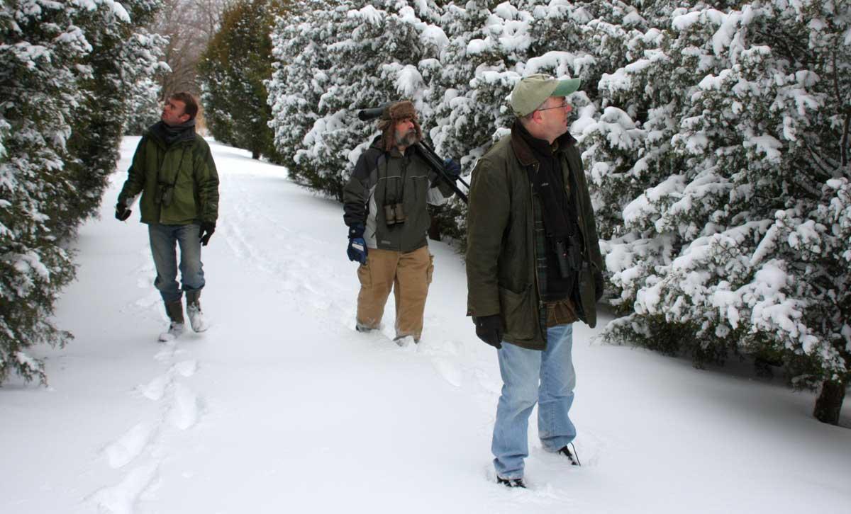 winter watchers