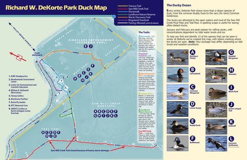 NJMC Winter Duck Map