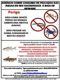 Crab-portuguese