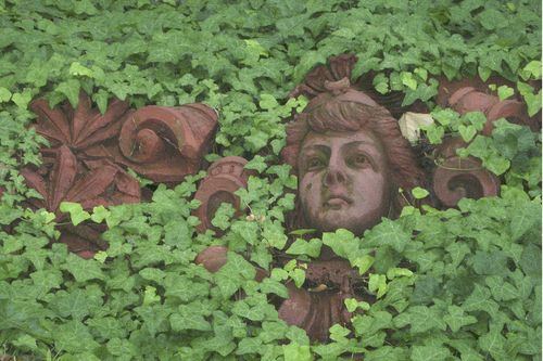 Ivy statue face - Chris Peters