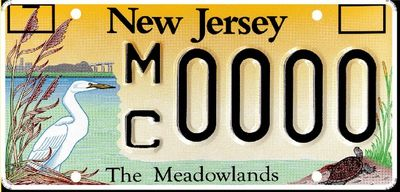 Mct license plate -1