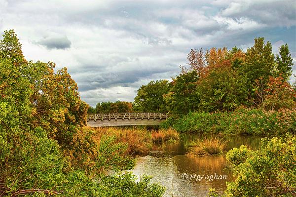 Sept 20_Mill Creek Marsh_Regina Geoghan_0362