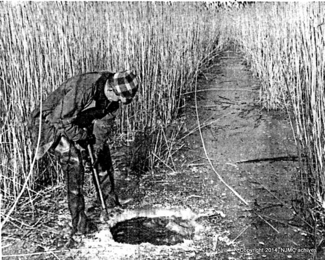 1-old muskrat hunting pic