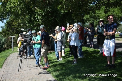 Longo birding group