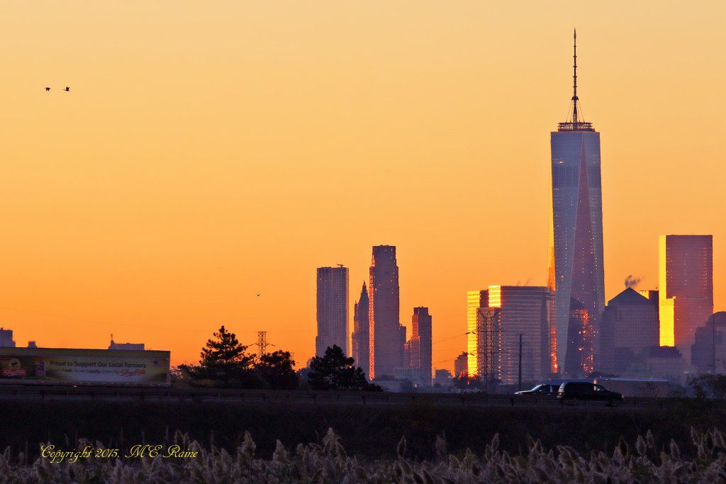 067 V Sunrise 001bf RchrdDKorte Park Mdwlnds NJ NYC n Freedom Tower Vw 101915 OK FLICKR