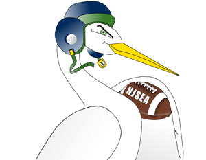football-egret-right-super-bird-sunday-cropped