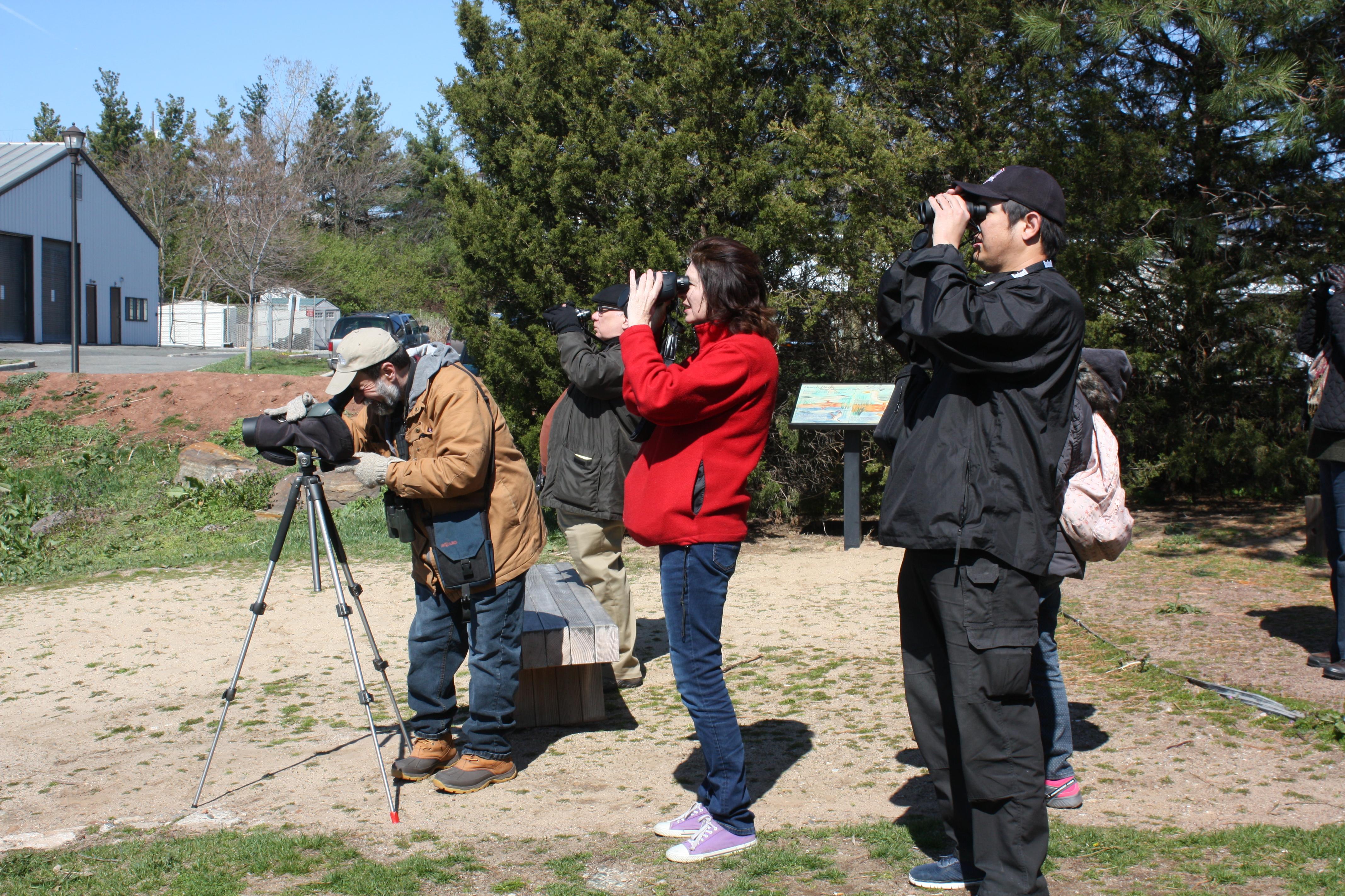birding beginners2